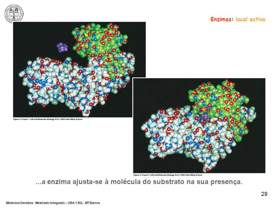 ...a enzima ajusta-se à molécula do substrato na sua presença.