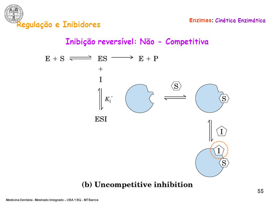 Regulação e Inibidores Inibição reversível: Não - Competitiva