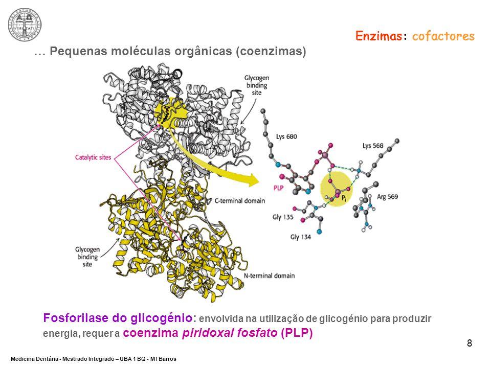 Enzimas: cofactores … Pequenas moléculas orgânicas (coenzimas)
