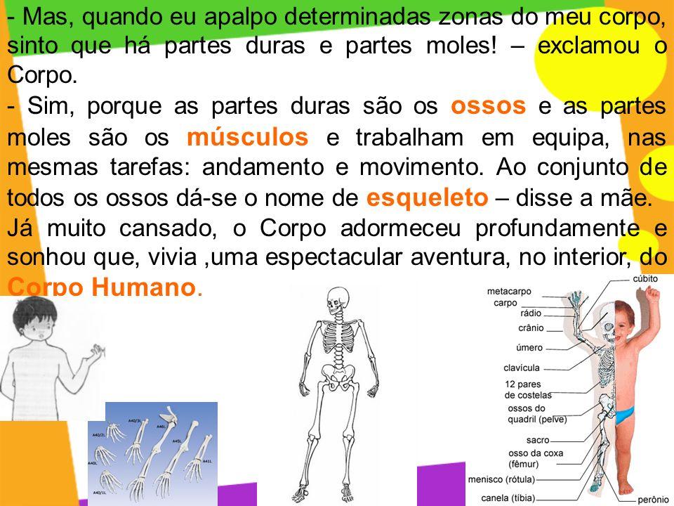 - Mas, quando eu apalpo determinadas zonas do meu corpo, sinto que há partes duras e partes moles! – exclamou o Corpo.