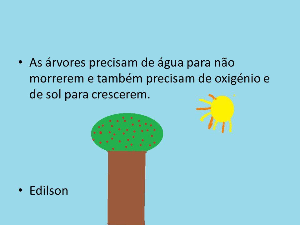 As árvores precisam de água para não morrerem e também precisam de oxigénio e de sol para crescerem.