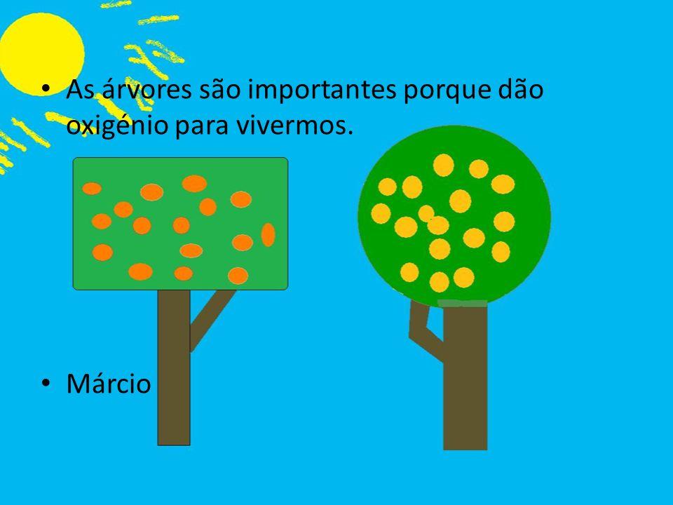 As árvores são importantes porque dão oxigénio para vivermos.