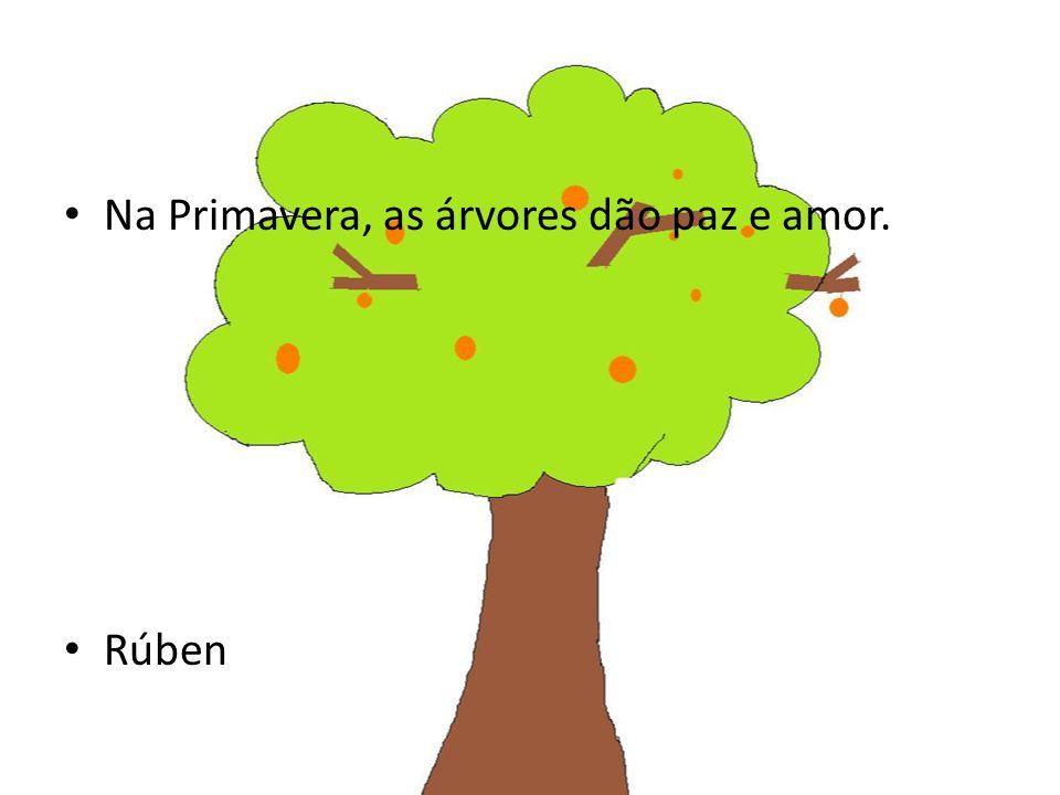 Na Primavera, as árvores dão paz e amor.