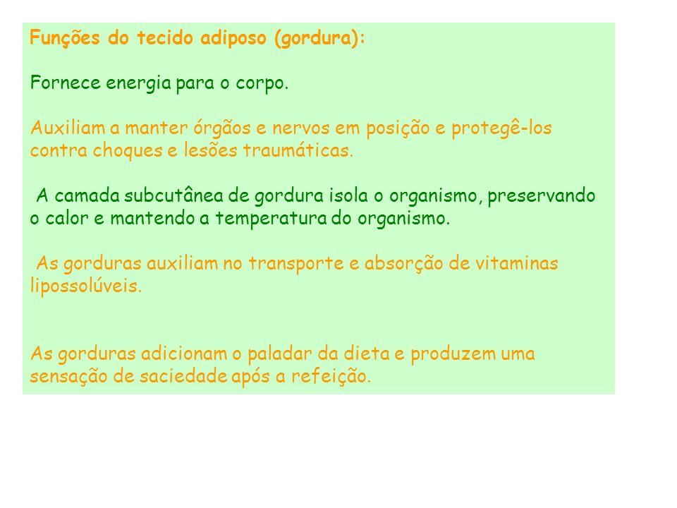 Funções do tecido adiposo (gordura):
