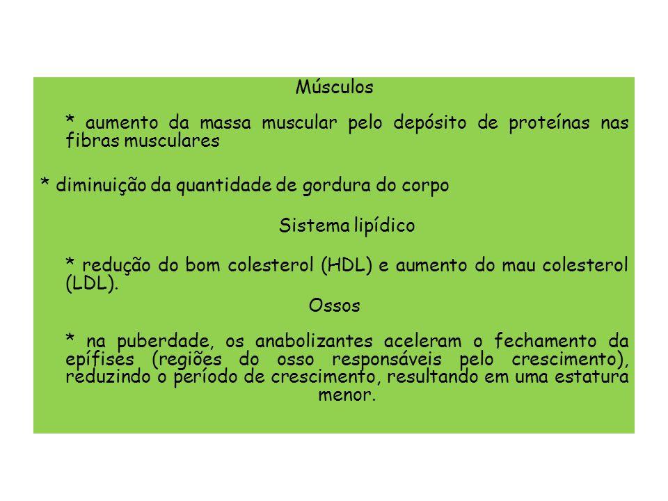 Músculos * aumento da massa muscular pelo depósito de proteínas nas fibras musculares