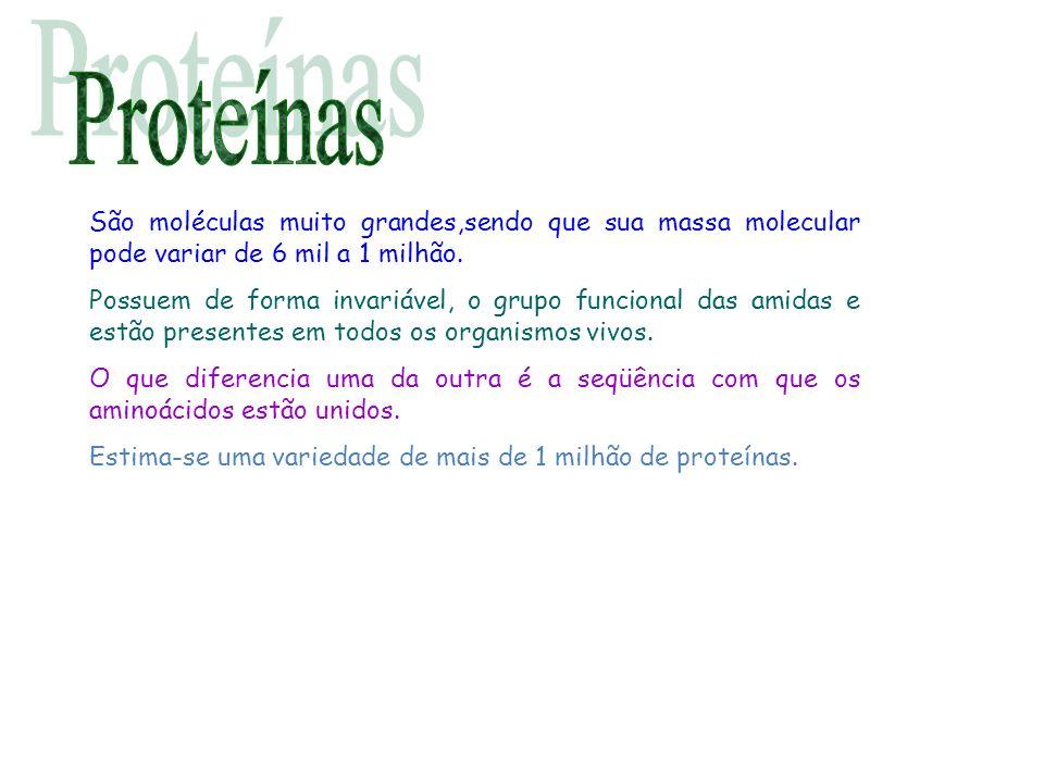 Proteínas São moléculas muito grandes,sendo que sua massa molecular pode variar de 6 mil a 1 milhão.