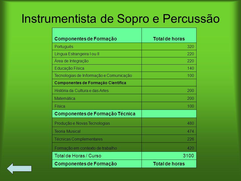 Instrumentista de Sopro e Percussão