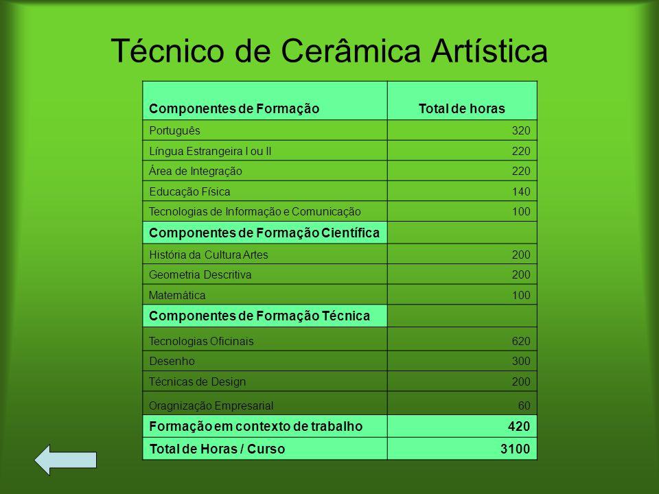 Técnico de Cerâmica Artística
