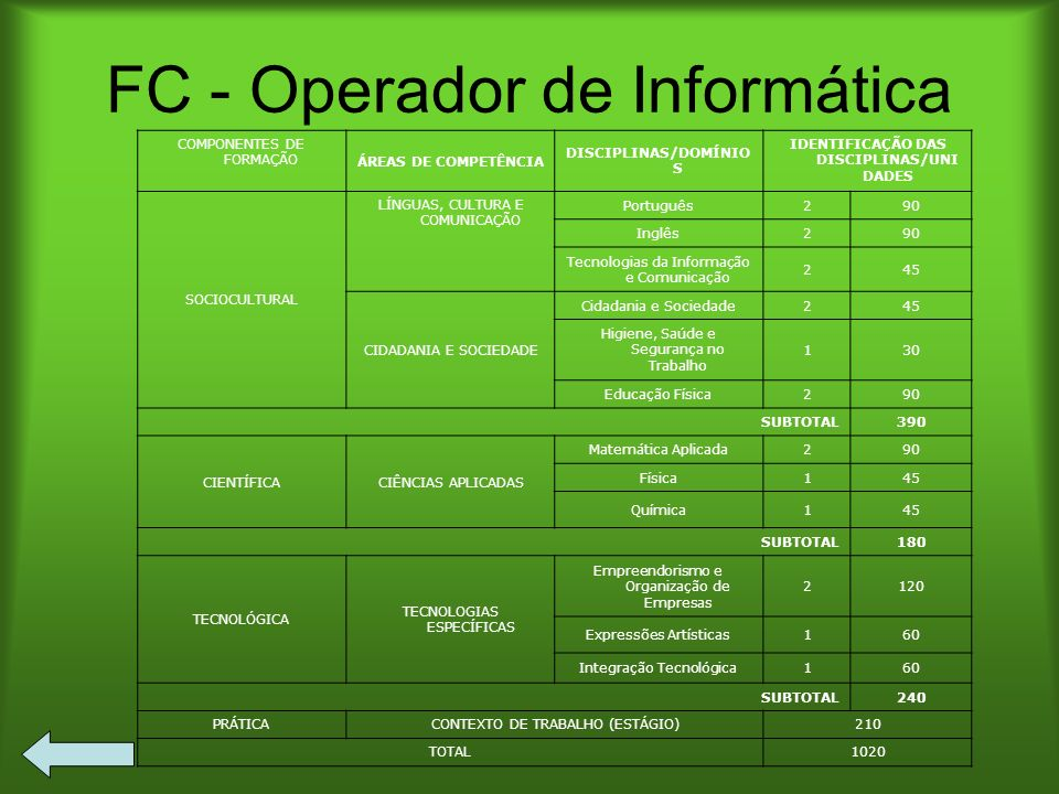 FC - Operador de Informática