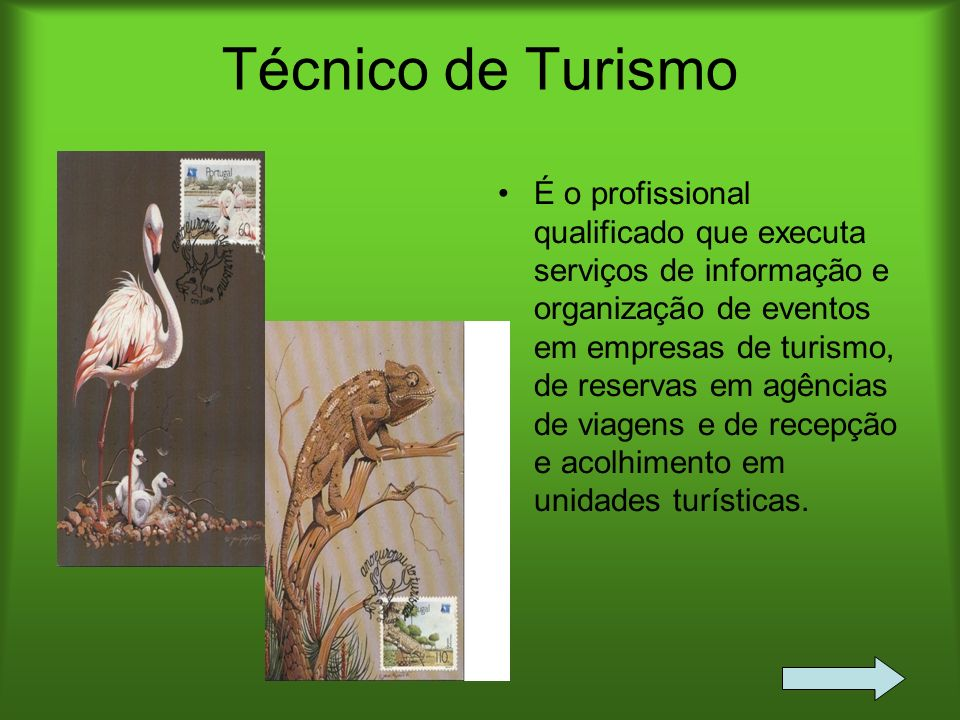 Técnico de Turismo