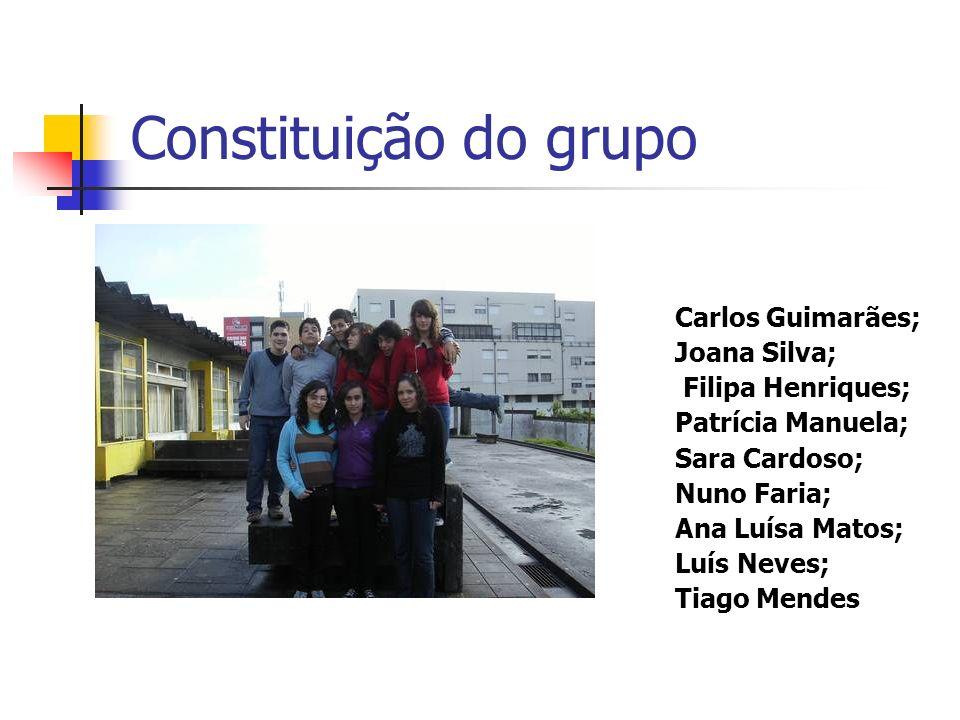 Constituição do grupo Carlos Guimarães; Joana Silva; Filipa Henriques;