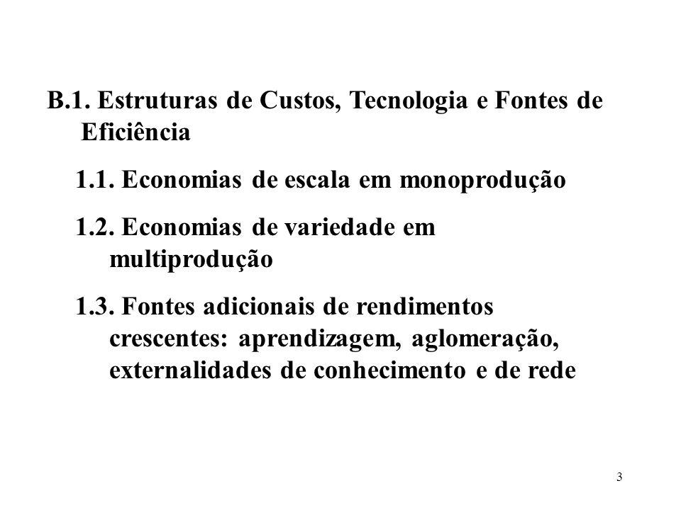 B.1. Estruturas de Custos, Tecnologia e Fontes de Eficiência