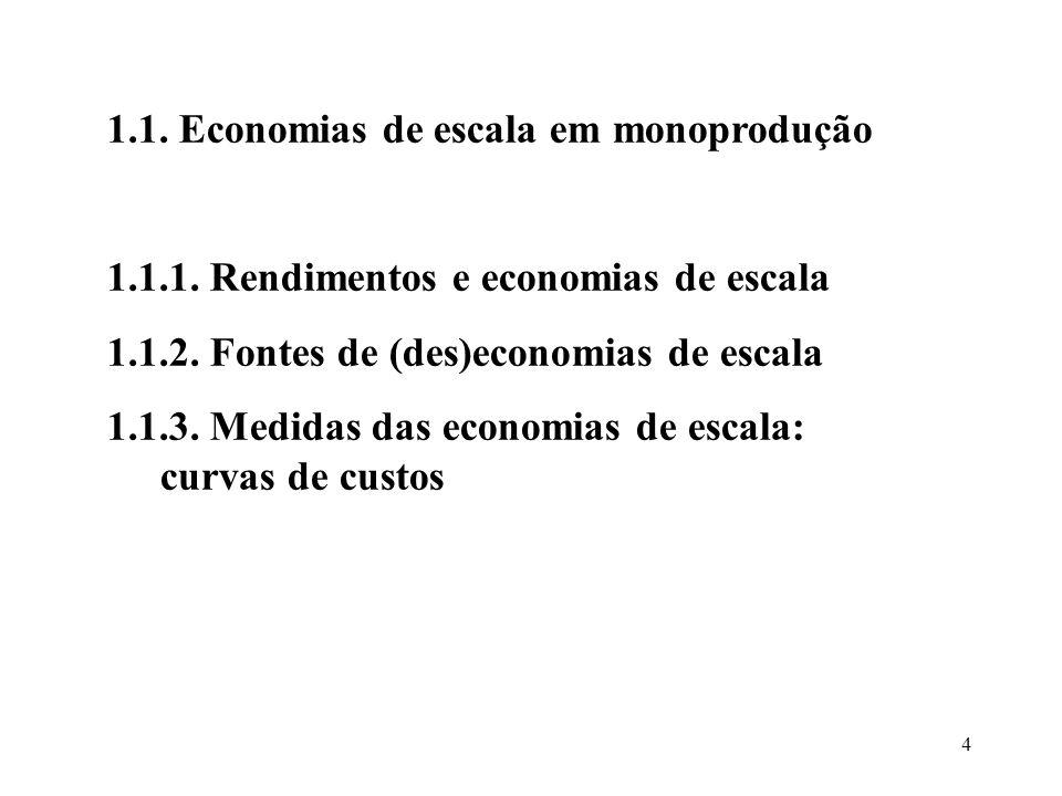 1.1. Economias de escala em monoprodução