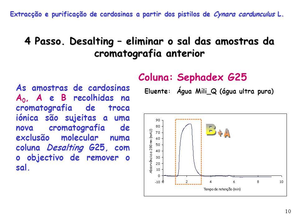 Extracção e purificação de cardosinas a partir dos pistilos de Cynara cardunculus L.