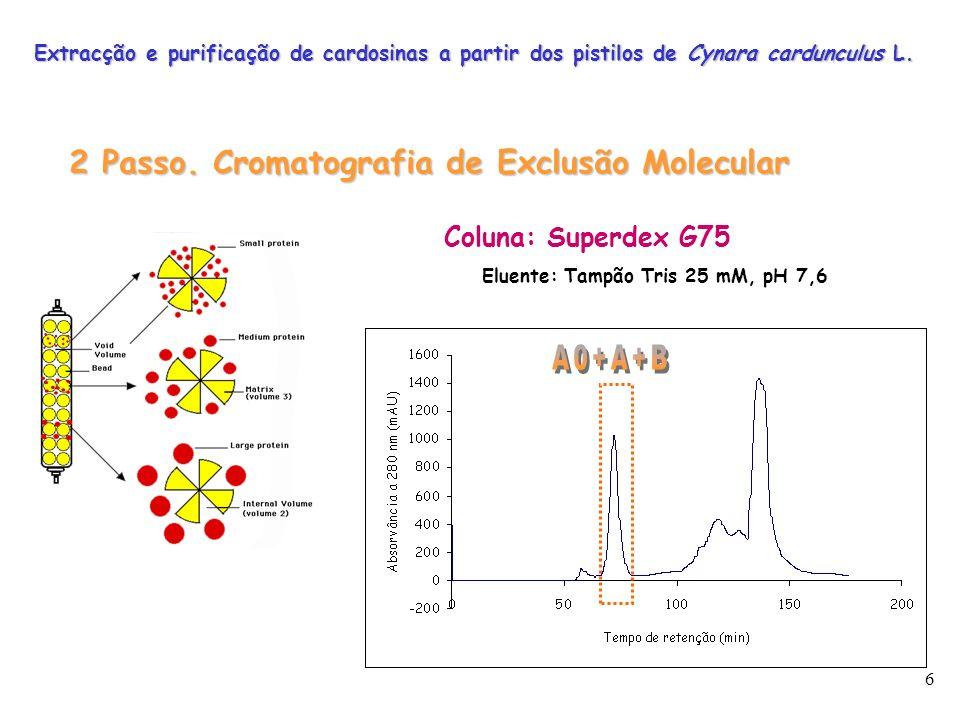 2 Passo. Cromatografia de Exclusão Molecular