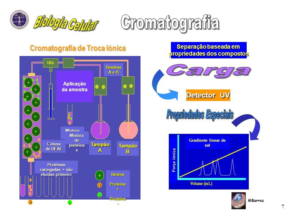 Biologia Celular Cromatografia Carga Propriedades Especiais