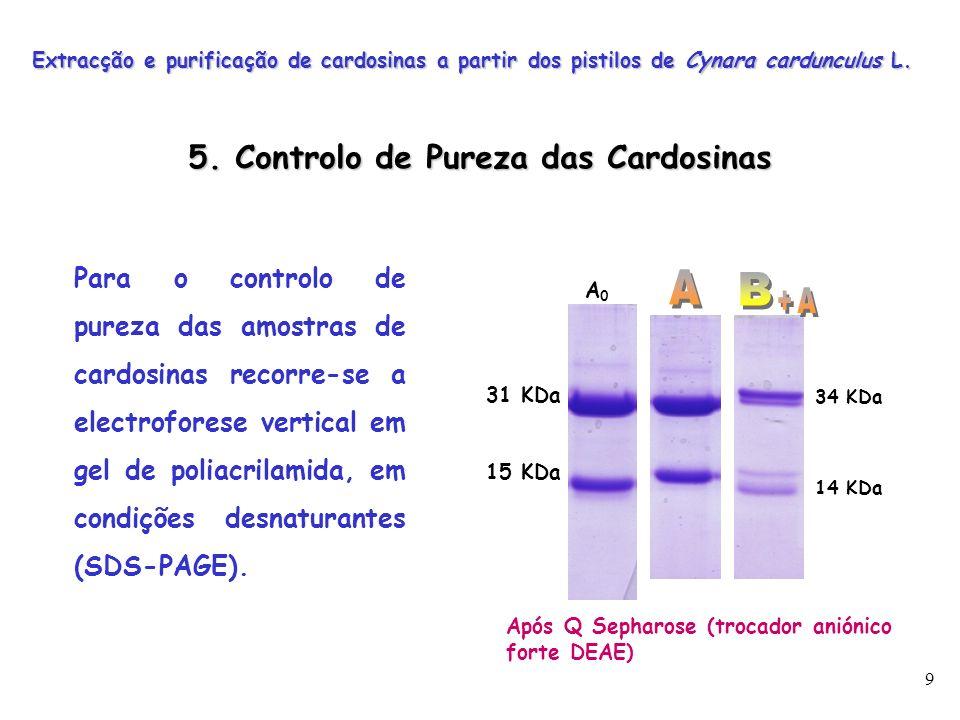 5. Controlo de Pureza das Cardosinas