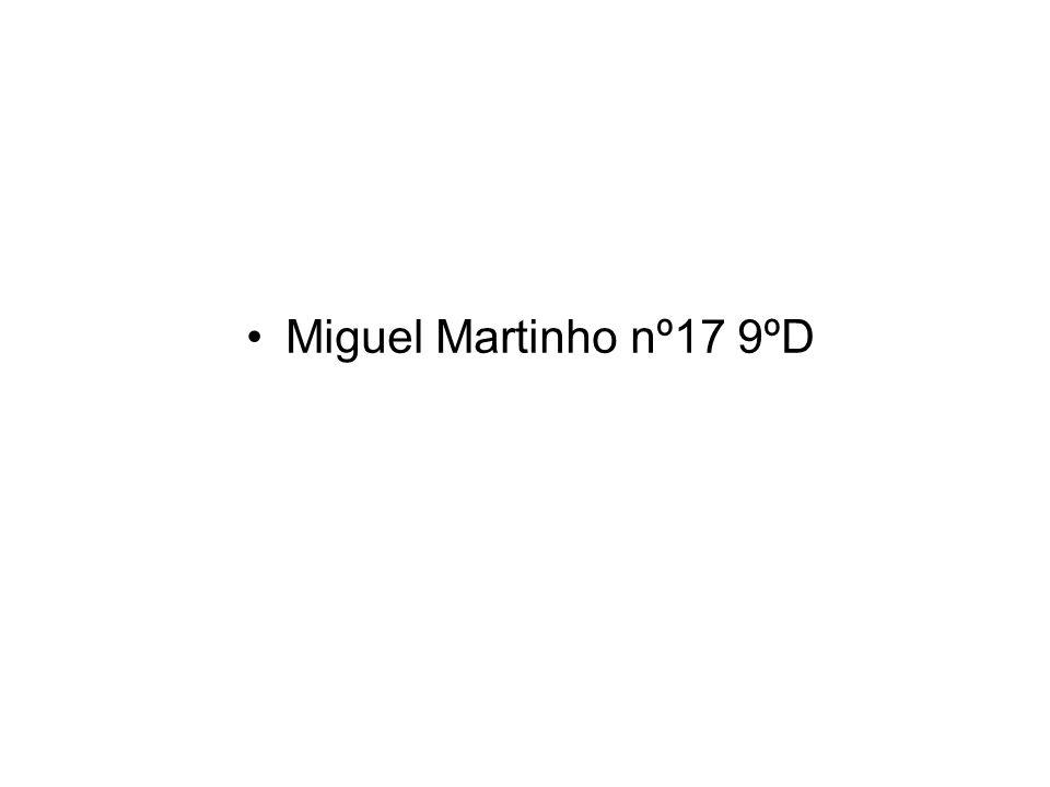 Miguel Martinho nº17 9ºD