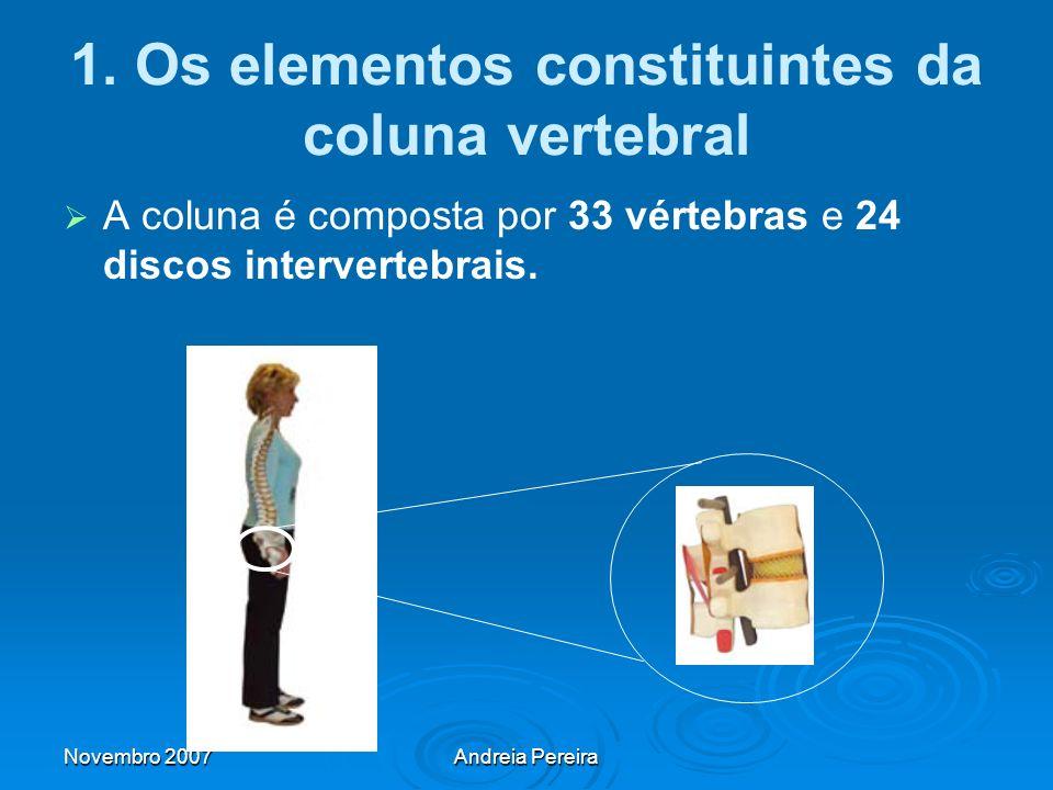 1. Os elementos constituintes da coluna vertebral