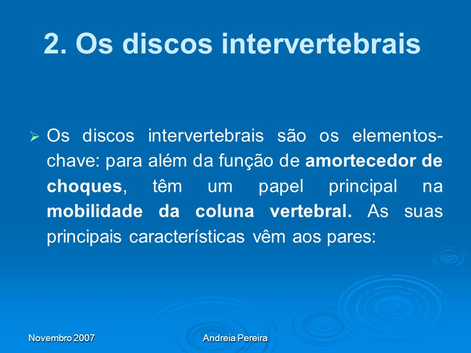 2. Os discos intervertebrais