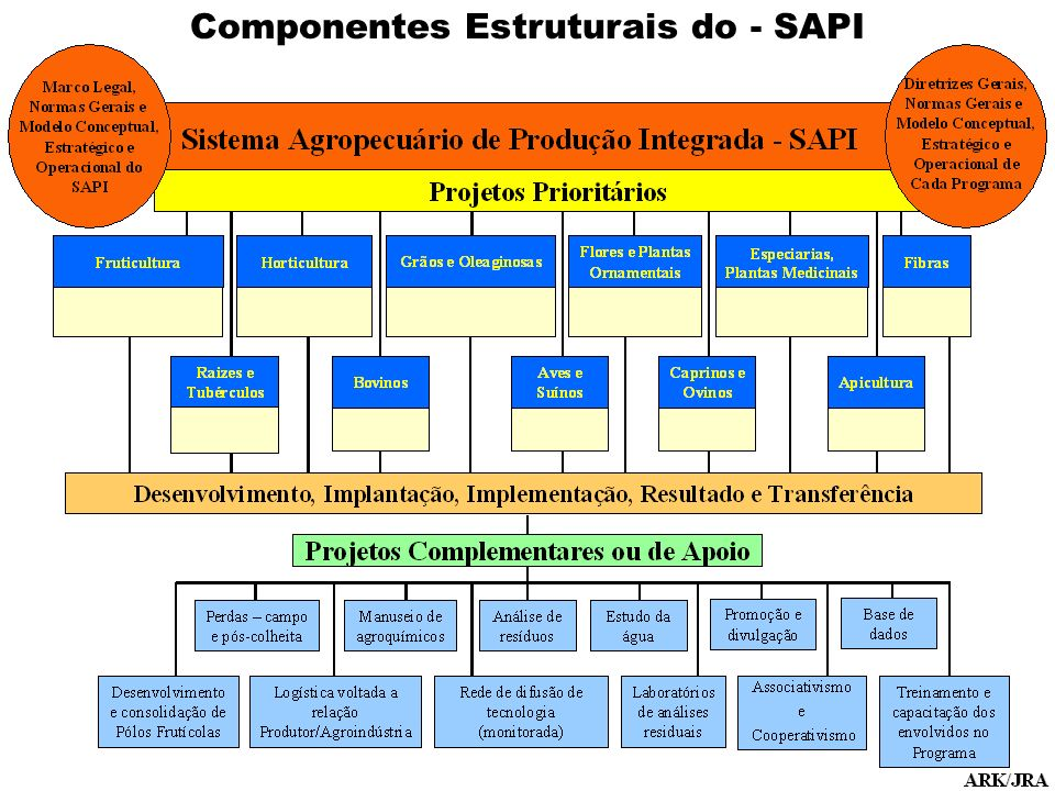 Componentes Estruturais do - SAPI