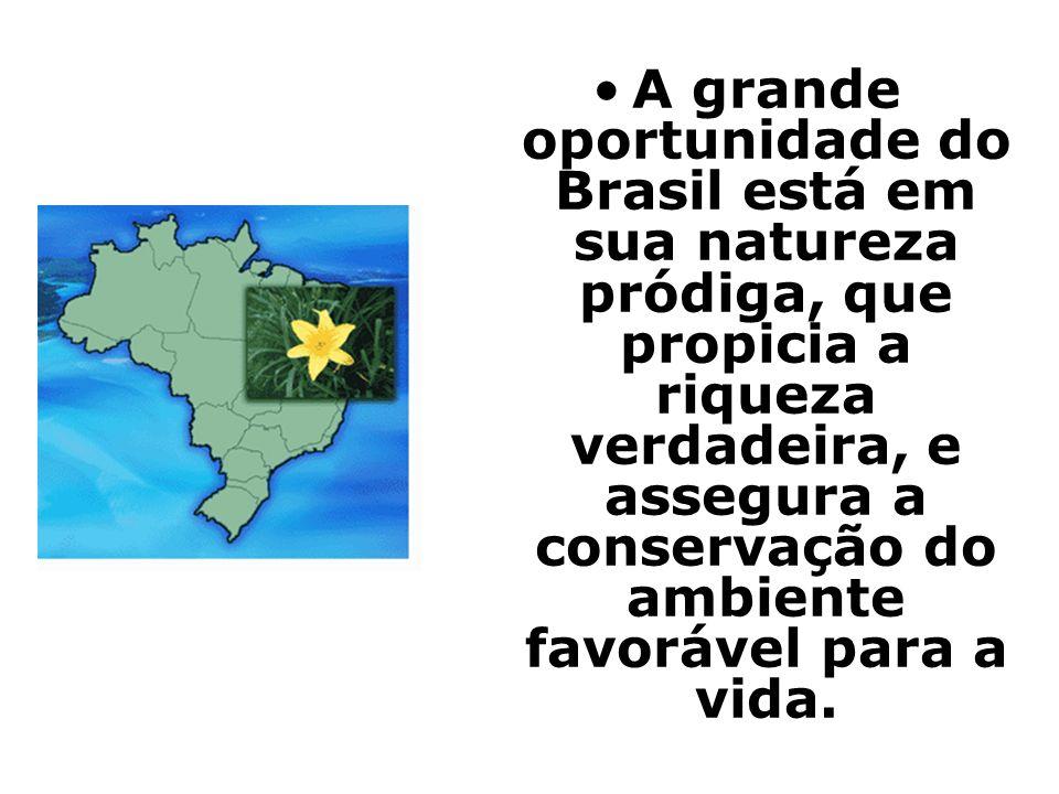 A grande oportunidade do Brasil está em sua natureza pródiga, que propicia a riqueza verdadeira, e assegura a conservação do ambiente favorável para a vida.