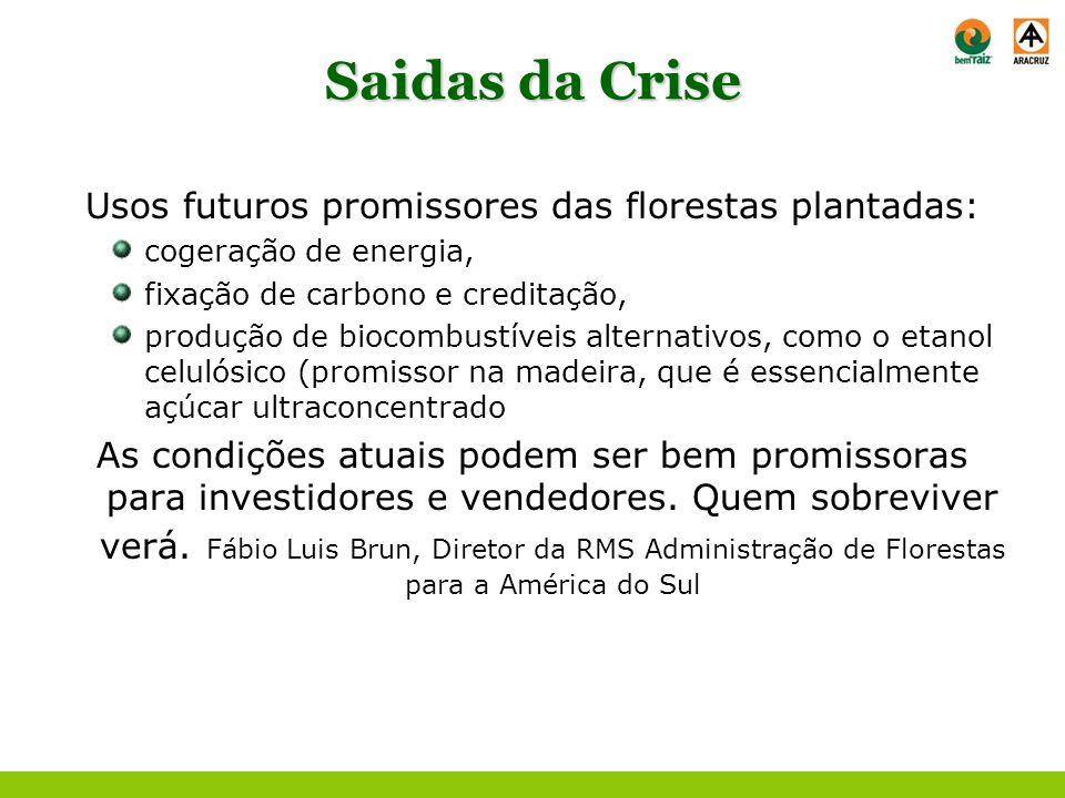 Usos futuros promissores das florestas plantadas: