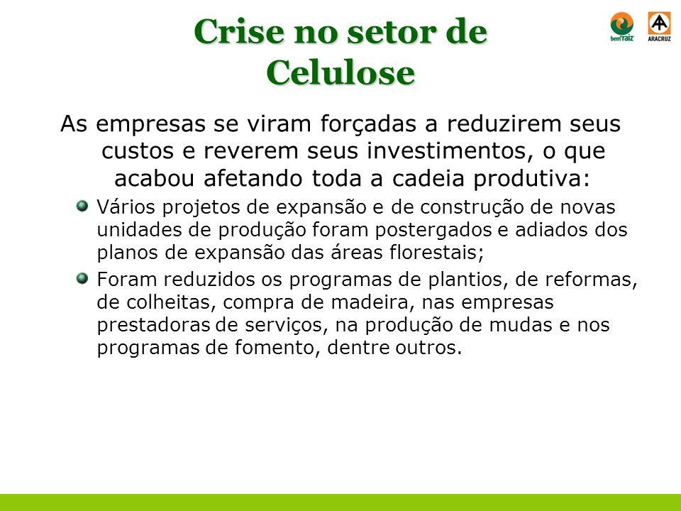 Crise no setor de Celulose