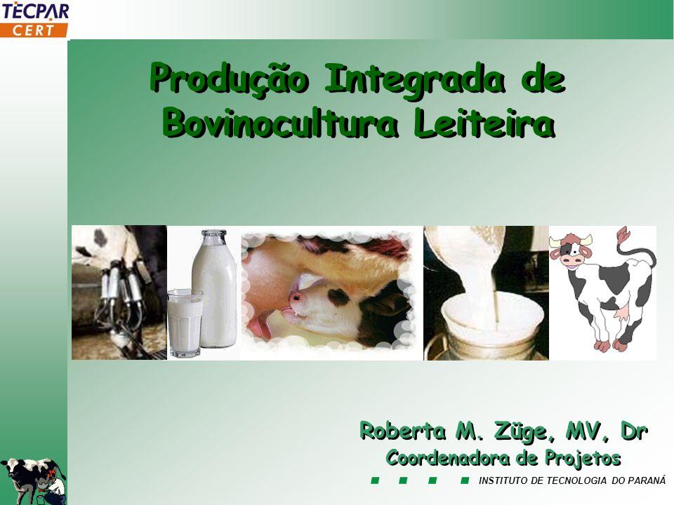 Produção Integrada de Bovinocultura Leiteira Coordenadora de Projetos
