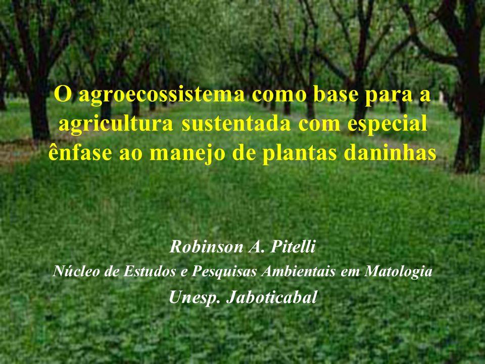 Núcleo de Estudos e Pesquisas Ambientais em Matologia
