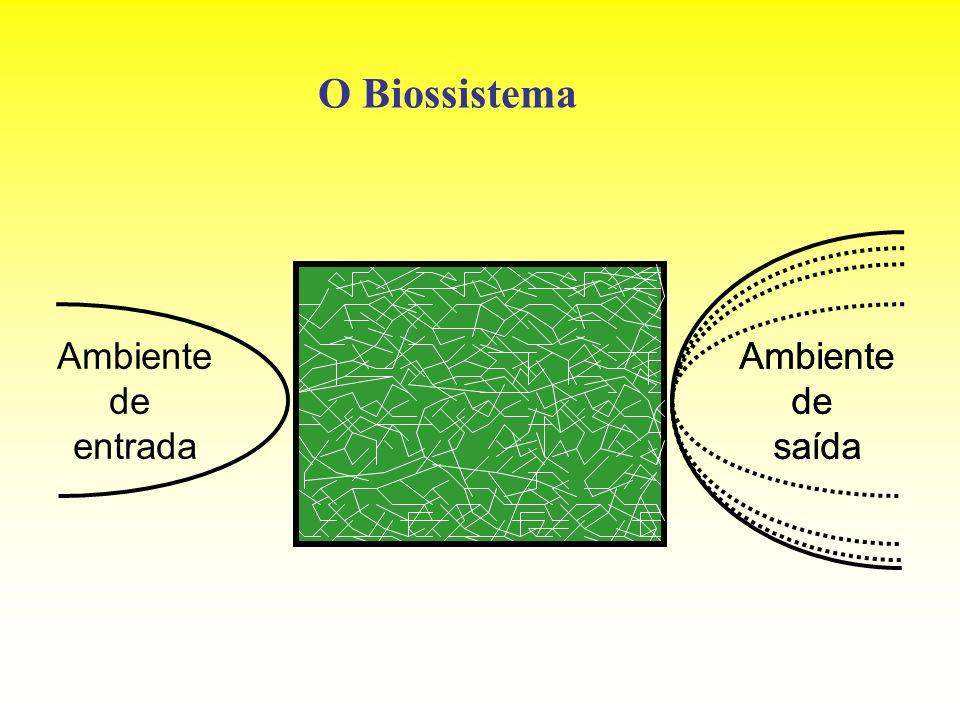O Biossistema Ambiente de entrada Ambiente de saída Ambiente de saída