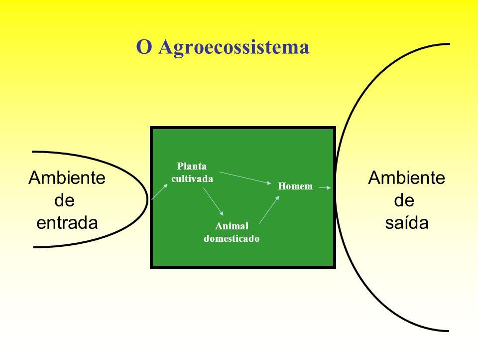 O Agroecossistema Ambiente de entrada Ambiente de saída Planta