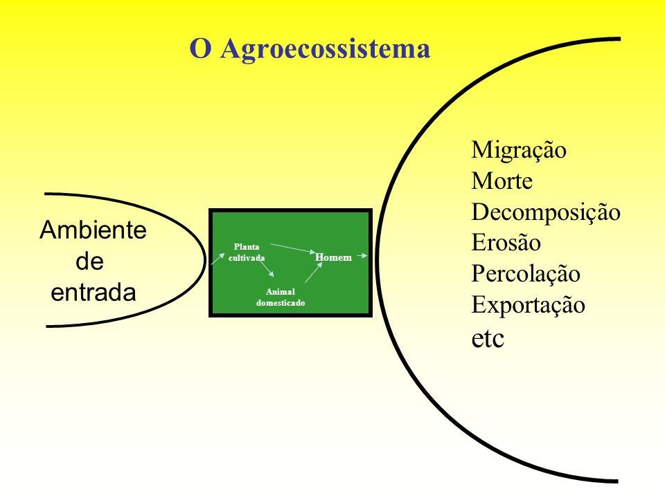 O Agroecossistema etc Migração Morte Decomposição Erosão Percolação
