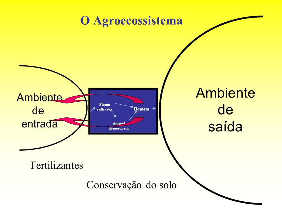 Ambiente de saída O Agroecossistema Ambiente de entrada Fertilizantes