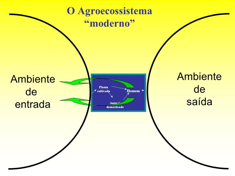 O Agroecossistema moderno