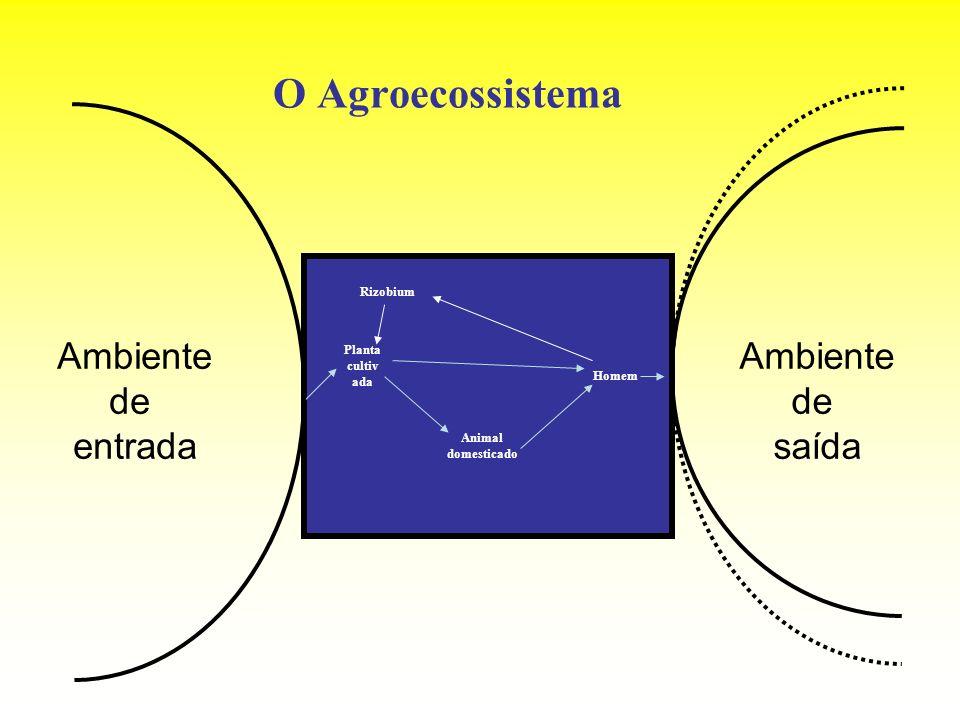 O Agroecossistema Ambiente de entrada Ambiente de saída Rizobium