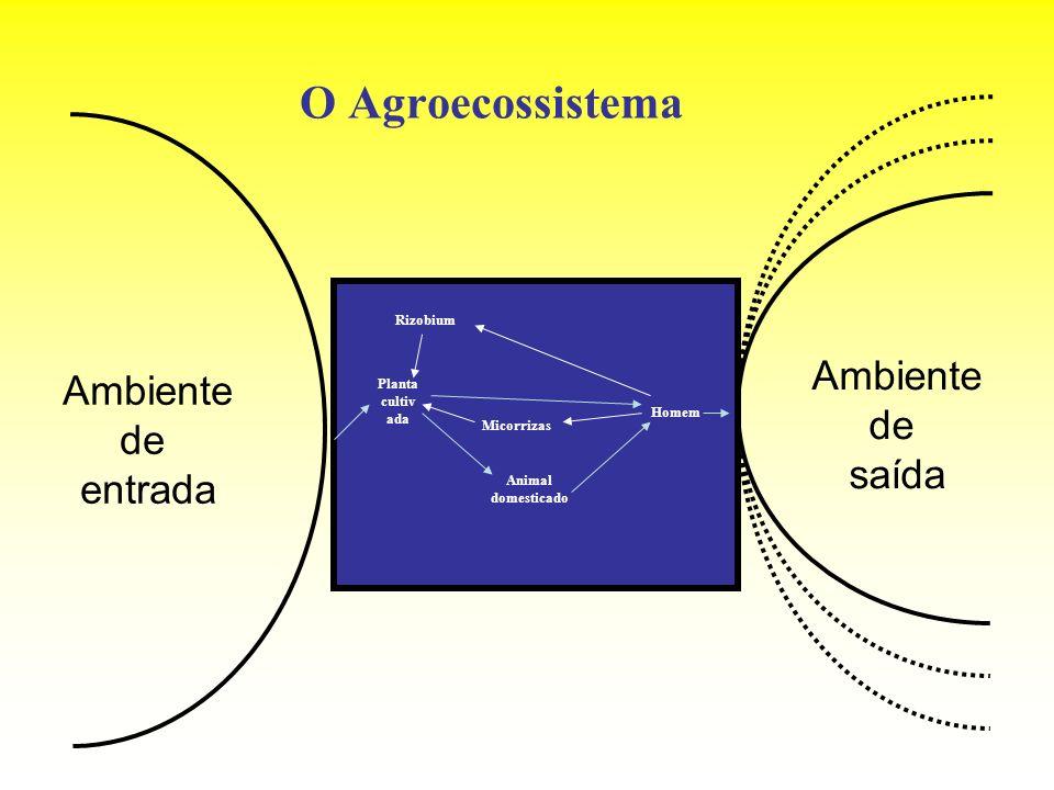 O Agroecossistema Ambiente Ambiente de de saída entrada Rizobium