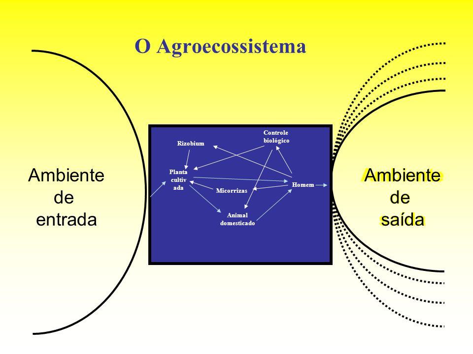 O Agroecossistema Ambiente de entrada Ambiente de saída Ambiente de
