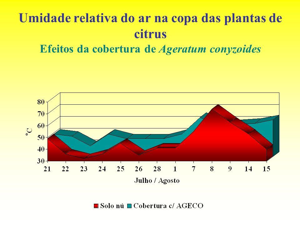 Umidade relativa do ar na copa das plantas de citrus Efeitos da cobertura de Ageratum conyzoides