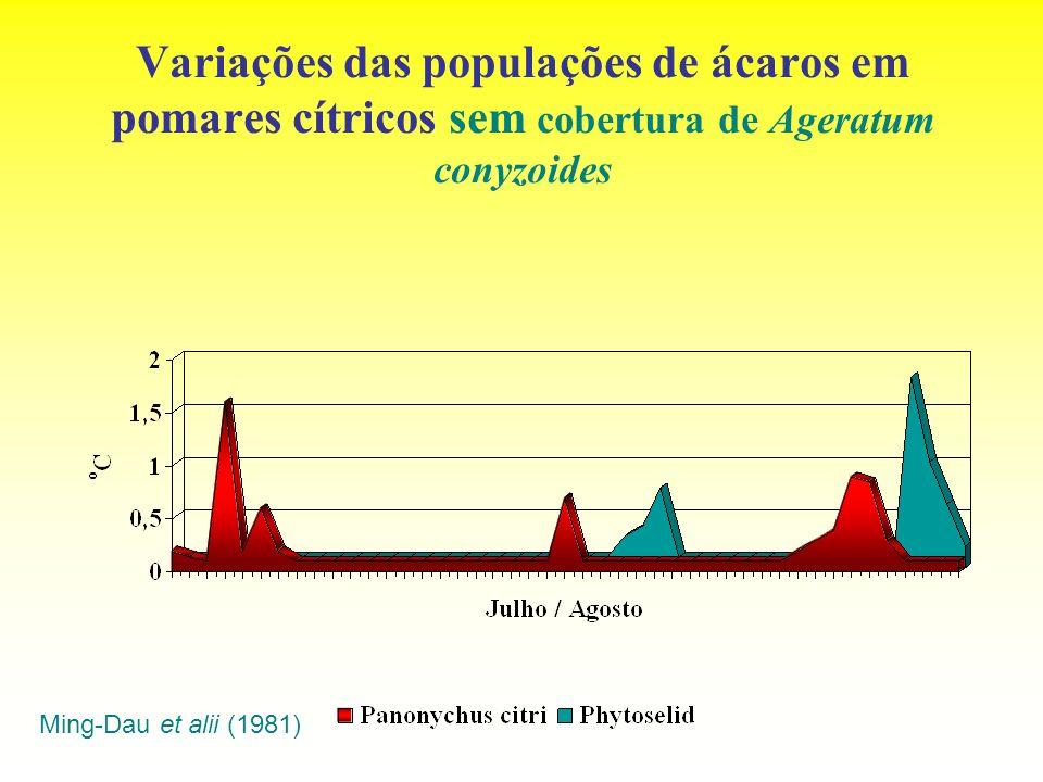 Variações das populações de ácaros em pomares cítricos sem cobertura de Ageratum conyzoides