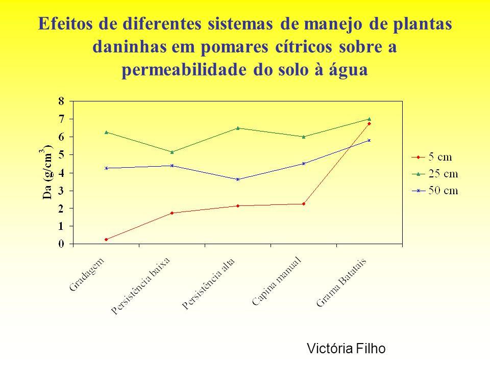 Efeitos de diferentes sistemas de manejo de plantas daninhas em pomares cítricos sobre a permeabilidade do solo à água