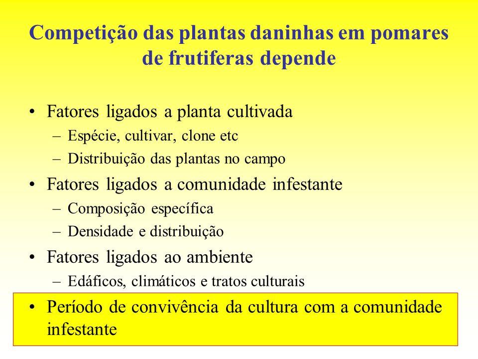 Competição das plantas daninhas em pomares de frutiferas depende