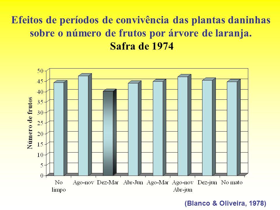Efeitos de períodos de convivência das plantas daninhas sobre o número de frutos por árvore de laranja. Safra de 1974