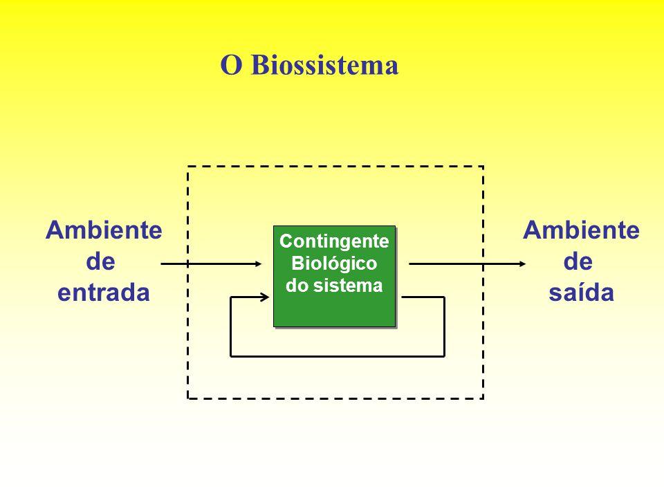 O Biossistema Ambiente de entrada Ambiente de saída Contingente