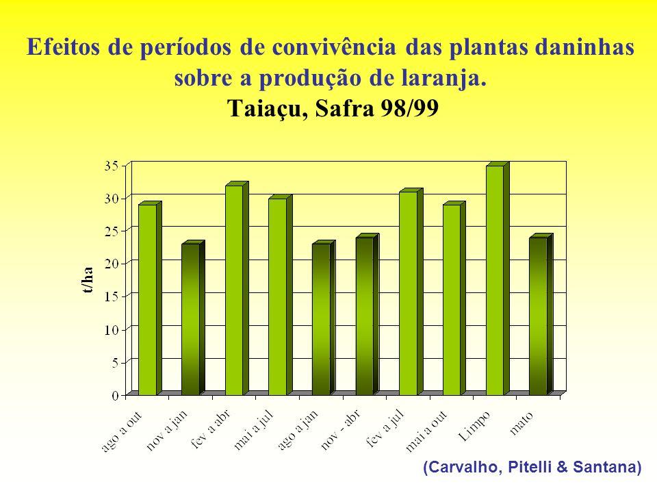 Efeitos de períodos de convivência das plantas daninhas sobre a produção de laranja. Taiaçu, Safra 98/99