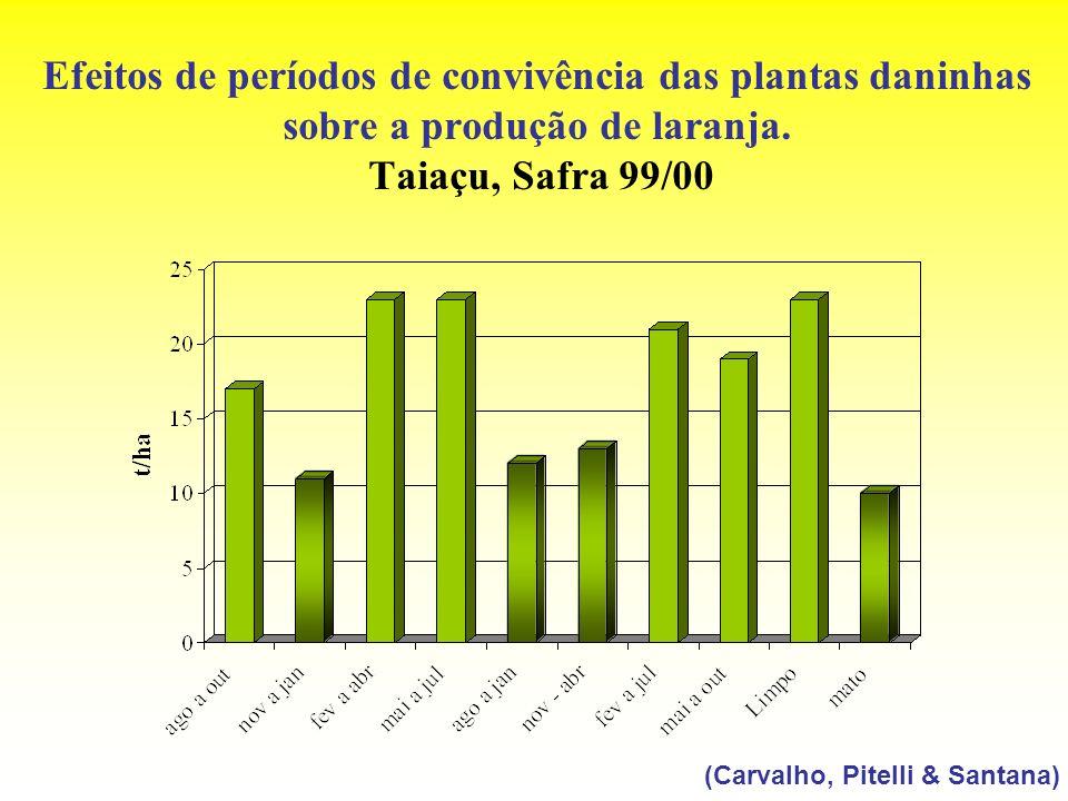 Efeitos de períodos de convivência das plantas daninhas sobre a produção de laranja. Taiaçu, Safra 99/00