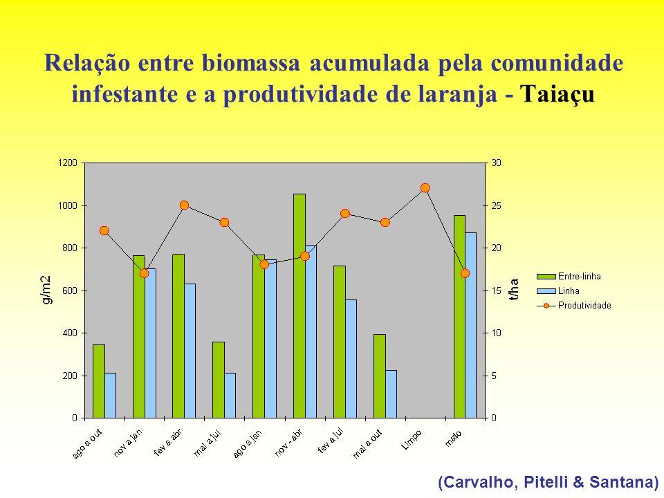 Relação entre biomassa acumulada pela comunidade infestante e a produtividade de laranja - Taiaçu