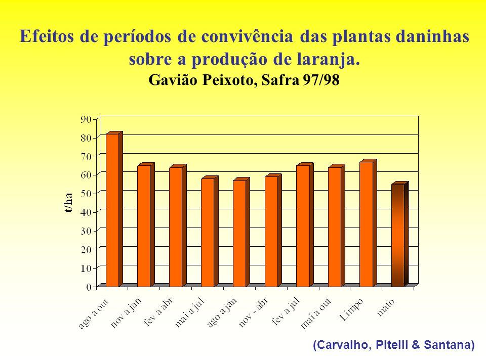 Efeitos de períodos de convivência das plantas daninhas sobre a produção de laranja. Gavião Peixoto, Safra 97/98