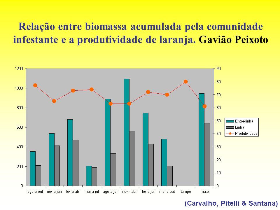 Relação entre biomassa acumulada pela comunidade infestante e a produtividade de laranja. Gavião Peixoto