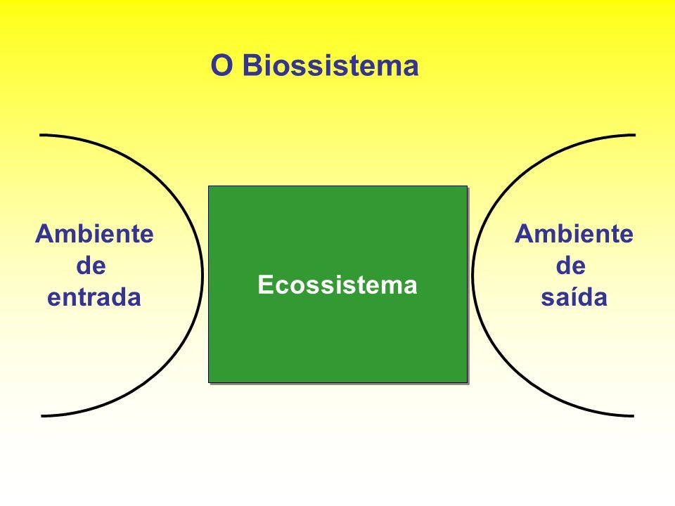 O Biossistema Ecossistema Ambiente de entrada Ambiente de saída